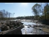 Лесоповал на болотах (7 серия)